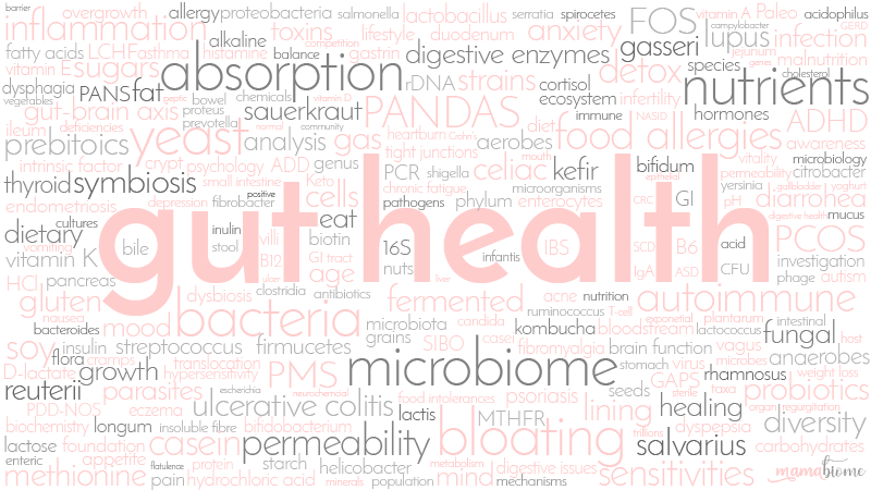 Gut Health Words - MamaBiome